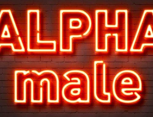 Vom Alphamann & Alphamännchen